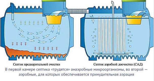 принцип работы аэробных бактерий в камере с принудительной аэрацией