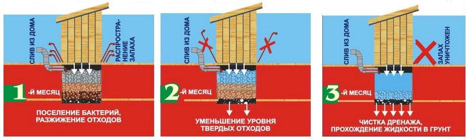 принцип работы биоактиватора в выгребной яме